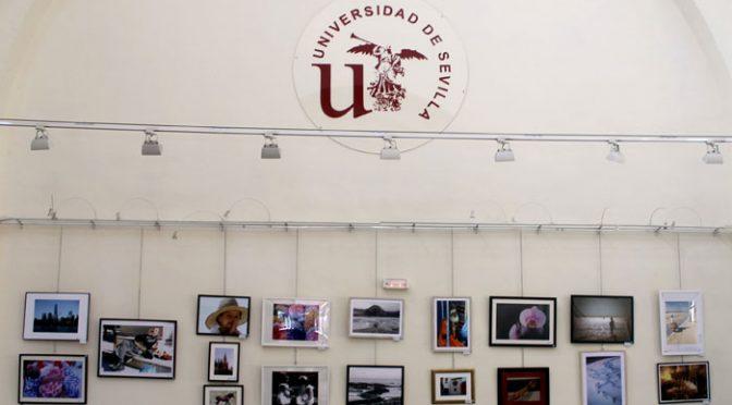 Ganadores de los premios de fotografía y pintura
